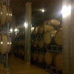 Sauska Winery Villany