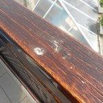 Cagadas de paloma (4 dias) y nadie las limpio en la terraza