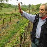 Gulian, owner and winemaker