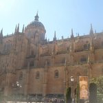 The Cathedral of Salamanca