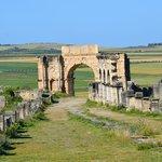 ruine de Volubilis