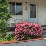 Alamo Motel and Cottages, Azaelia's At Motel