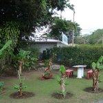 Grounds area