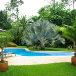 Le jardin du Playa Negra Guesthouse