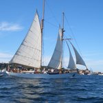 Sailing Ships in Port Townsend Bay