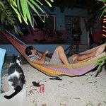Zona de descanso en las hamacas