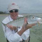 andros bonefish