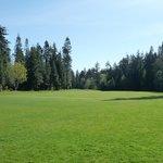 Storey Creek Golf Course Foto