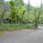 The grounds at the Butterfly Garden Inn.