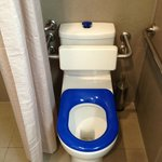 Unbelievably ugly toilet