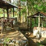 Rancho para Barbacoa/BBQ Ranch