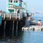 Catalina Avalon Pier