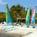 Catamarans (free to use)