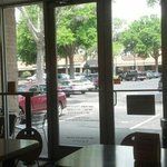 View from Which Wich