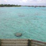 Vue depuis la vigie d'une ocean villa