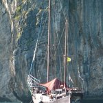 Foto de DragonHeart Sunset Snorkel Cruise-Private Day Cruise