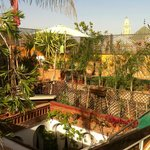 terrasse et bassin