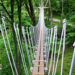 Foto de Hocking Hills Canopy Tours