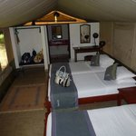 Our Luxury Tent with full toilet and shower, hot running water, just what you need after safari