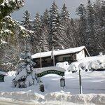 Winter im Zwieslerwaldhaus