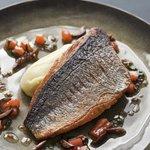 Sea Bass with Olive Oil Mash and Tomato & Coriander