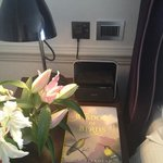 iPhone docking station & In-room book on birds