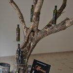 Albero di ulivo carico di buoni frutti ideato da Paolo Vallone