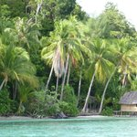 Raja Ampat - typical home - bring your mosquito net