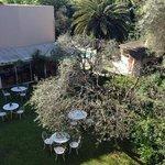 giardino e piscina dalla camera