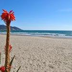spiaggia sulla quale si affaccia il nostro albergo