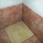 ducha habitación privada no era limpiado diariamente