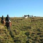 Llanthony Riding & Trekking