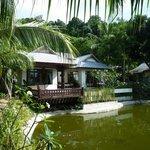 Le bungalow n°1