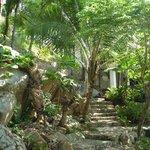 Un accès piéton aux bungalows en hauteur