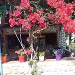 Babis Bar, Myrties, Kalymnos