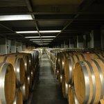Wine Tasting in Atripaldi - Underground Cellar