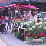 Marknad vid Olanders på Odentorget