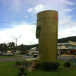 Tully Golden Gumboot