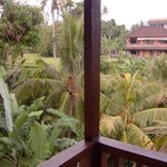 view from the balcony at the back side