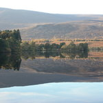 Loch Alvie by Kevin