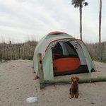 Tent site near the beach