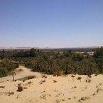 Bahariya (Bahereya) Oasis