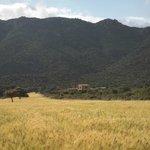 altes Gehöft im Valle de Monte Porceddus