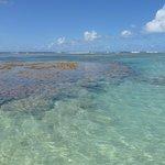 Plage avec coraux