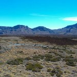 volcano El Teide (7)