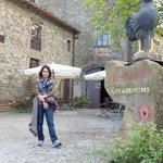 Foto di Vini Castelvecchi in Chianti