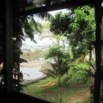 Room #8 ocean view