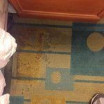 Filthy stain on floor next to bed.