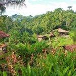 Overnight Pacuare Jungle Camp trip