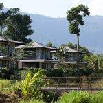 Pond/Garden Villas (65522260)